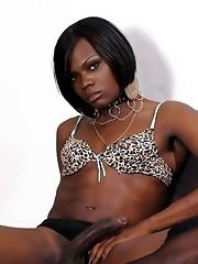 Transsexual ebony hottie Posh posing her fat dick